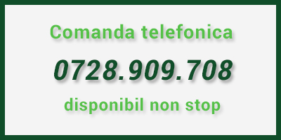 comanda_telefonica